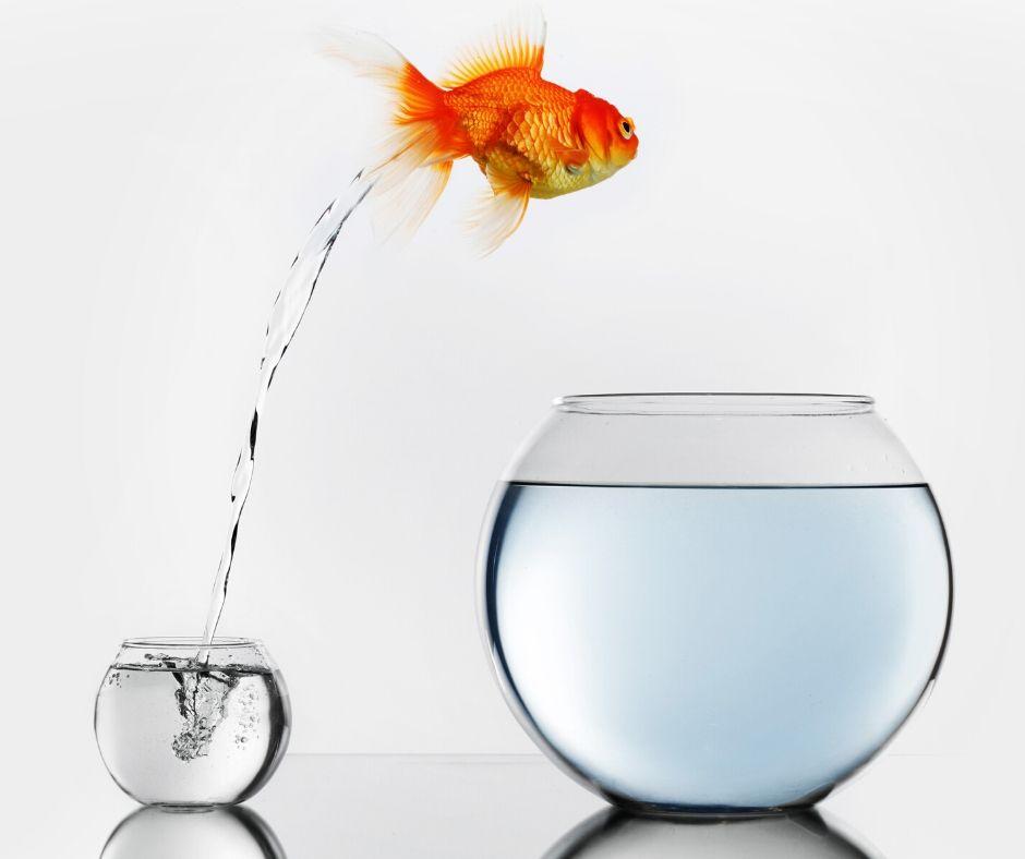 7 motivi importanti per cui devi migliorare te stesso